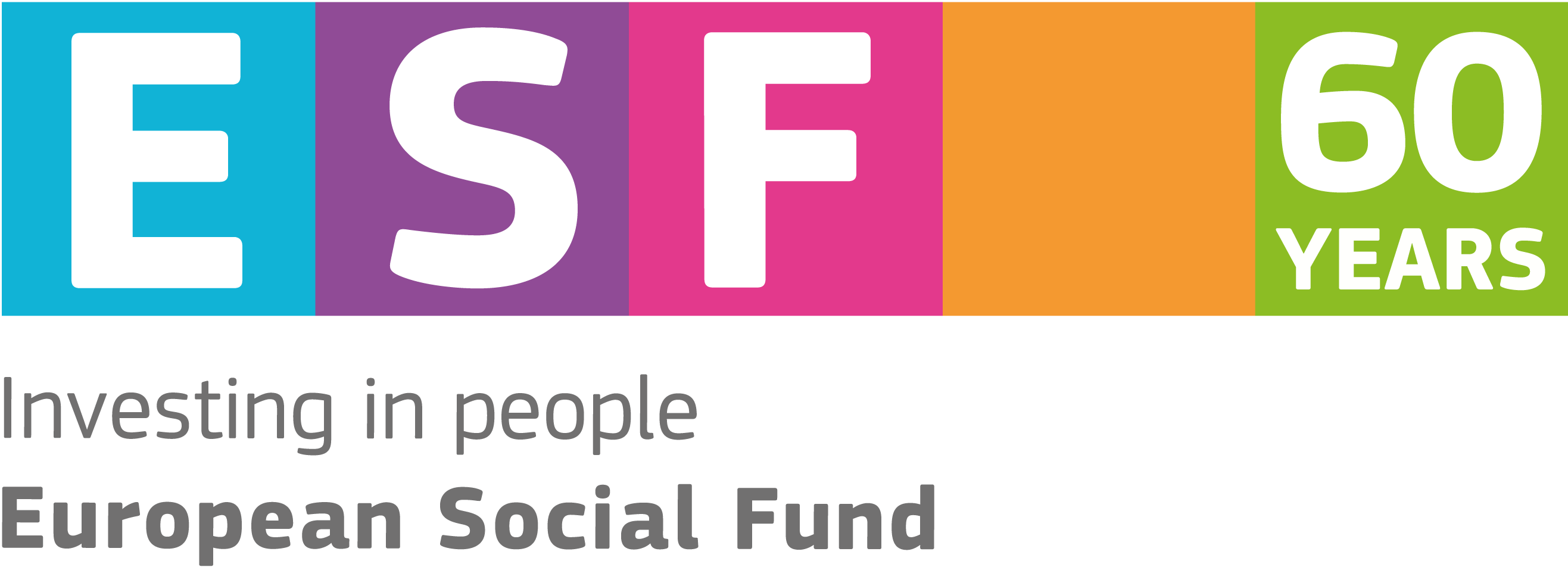 Image result for EUROPEAN SOCIAL FUND